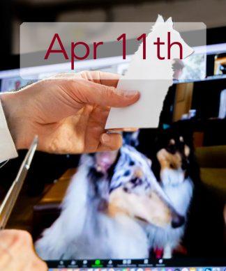 Apr 11th
